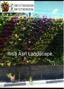 Gambar vertikal garden, green wall, jasa vertikal garden